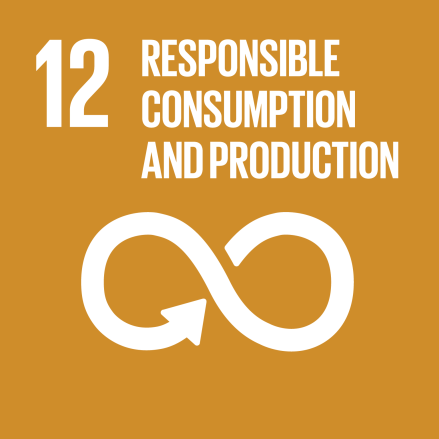 SDG-goals_Goal-12 Responsible Consumption & Production