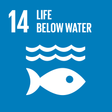SDG-goals_Goal-14 Life Below Water