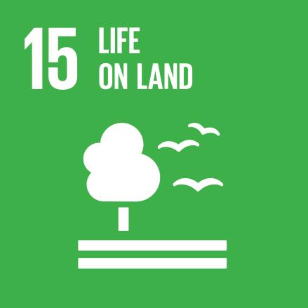 SDG-goals_Goal-15 Life On Land